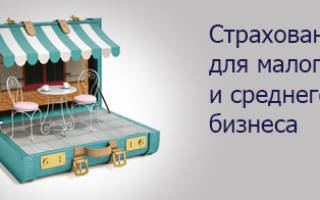 Страхование малого бизнеса