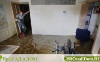 Акт обследования квартиры после залива образец