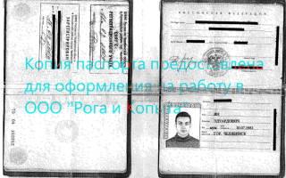 Как застраховаться при отправке фото паспорта в вацапе