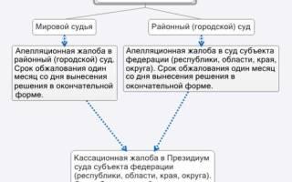 Как можно оспорить апелляционное определение горолского суда вступившее в законную силу