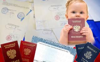 Декларация на оформление ребенку российского гражданства