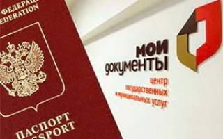 Загранпаспорт для ребенка до 14 лет через мфц москва официальный сайт