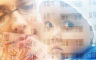 Покупка квартиры за материнский капитал последовательность действий