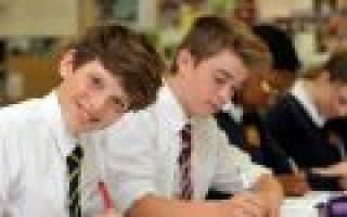 Как написать обращение к директору школы от родителей