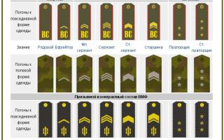 Аналог контр адмирала в армии