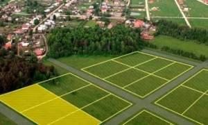 Примерная форма решения юридического лица о разделе земельного участка (подготовлено экспертами компании; Гарант; )
