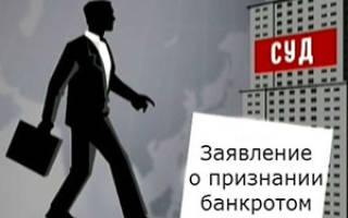 Процедура банкротства физического лица в 2020 году: пошаговая инструкция