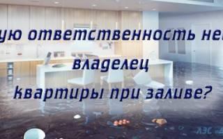 Обязанность собственника по содержанию имущества ГК РФ