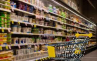 Договор на продукты питания образец