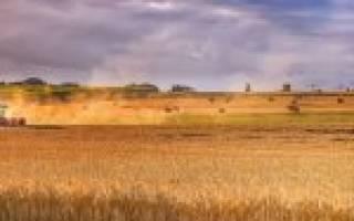 Самозахват земельного участка ответственность