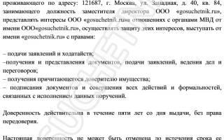 Инструкция: оформляем доверенность в МВД от юридического лица