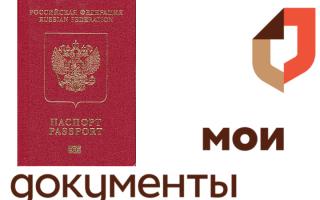 Документы необходимые для оформления загран паспорта как оформить загранпаспорт через мфц домодедово