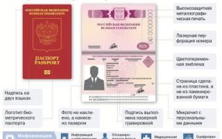Документы для юридического лица загранпаспорта