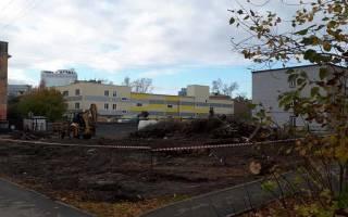 Экологи отказались от иска о запрете строительства крупного торгово-логистического центра под Новосибирском