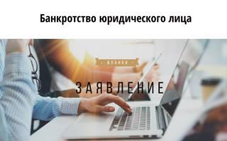 Образец заявления о банкротстве юридического лица кредитором