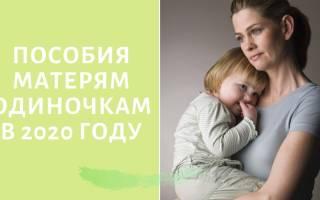 Выплаты матерям одиночкам в ярославской области 2020 году
